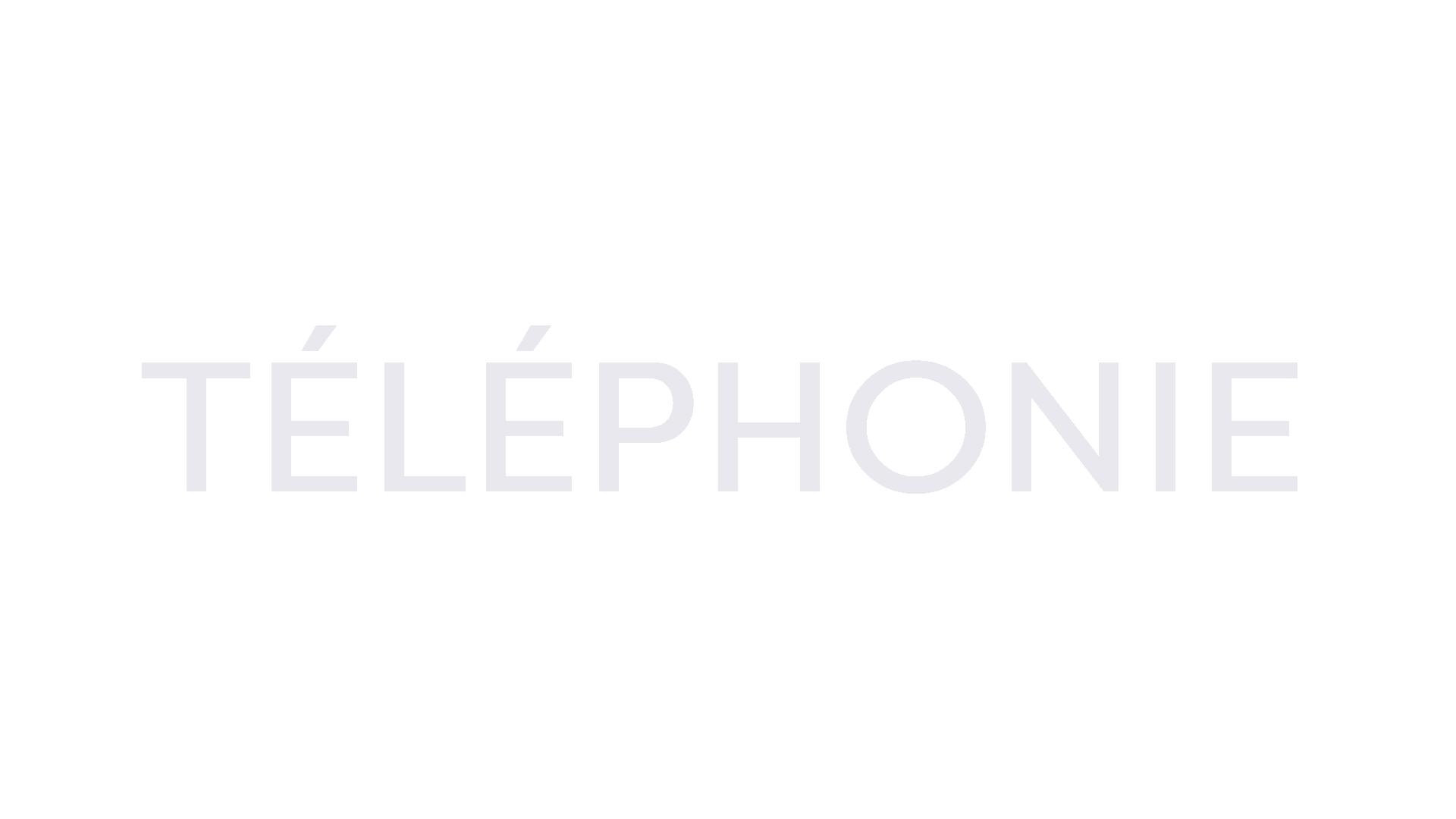 téléphonie.png